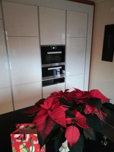 Küchengeräte Miele Vakuumierschublade, Wärmelade und Kombigerät Dampfgarer mit Backofen mit direktem Wasdetanschluss